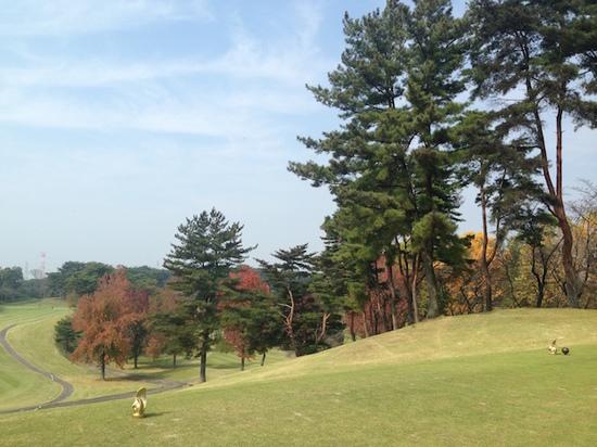 IMG_2792ゴルフ場.JPG